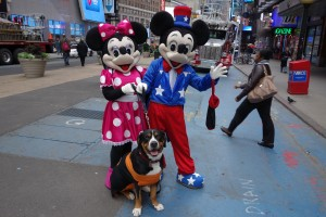 Oscar The Grouch GSMD Met Mickey Mouse During the Hurricane In Times Square