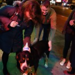 Swissy Oscar The Grouch Meets New Fans on His Birthday